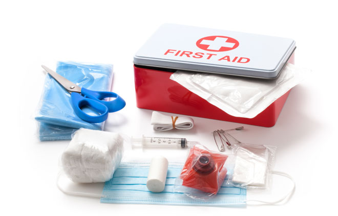 Premiers Secours / First Aid